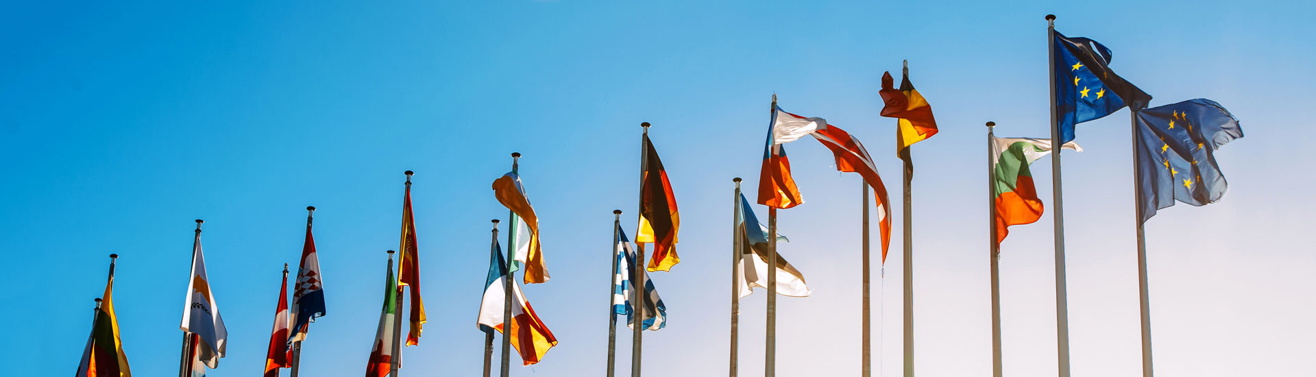 Home Page Banner of European Union Flags